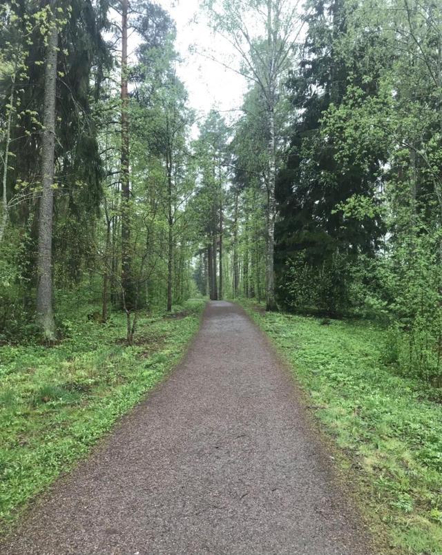 【我在芬兰】第17集-梦溪-买车之后遇到了哪些情况……