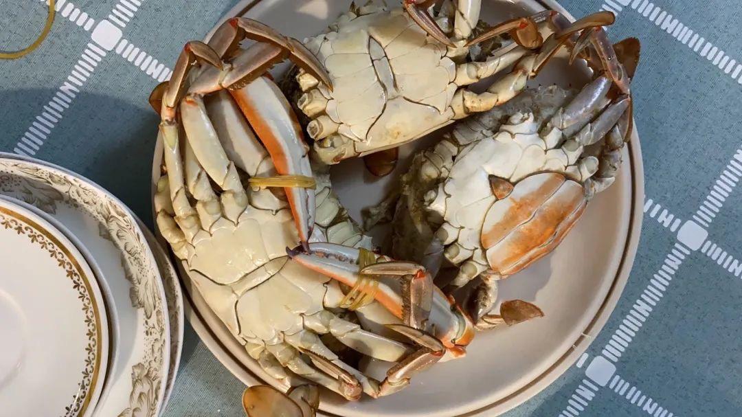 【照片墙】吃螃蟹+动物园